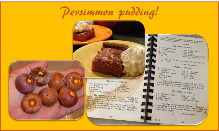 persimmon pudding page