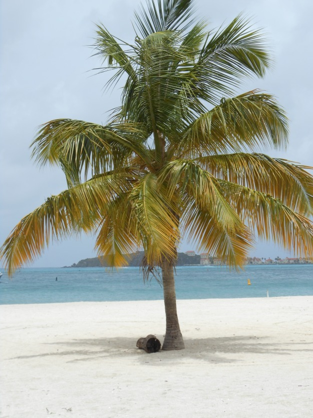 Cruise vacation 2012 240